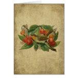 Colorful Bird & Cherries- Prim Lil Note Card