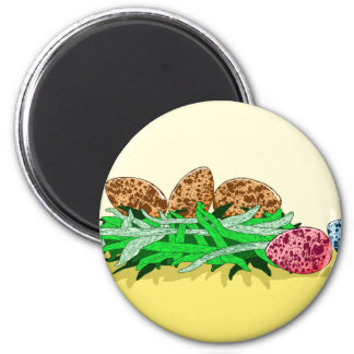 Colorful Bird Eggs 2 Inch Round Magnet