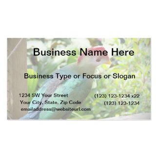 Colorful bird head turned on post business card
