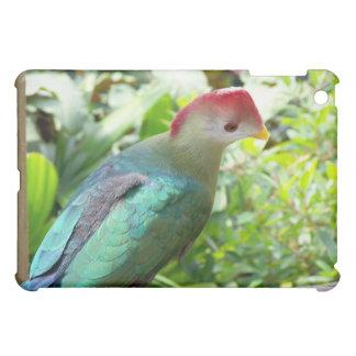Colorful bird head turned on post iPad mini case