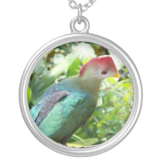Colorful bird head turned on post personalized necklace