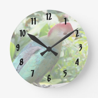 Colorful bird head turned on post round clock