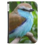 Colorful bird kindle case