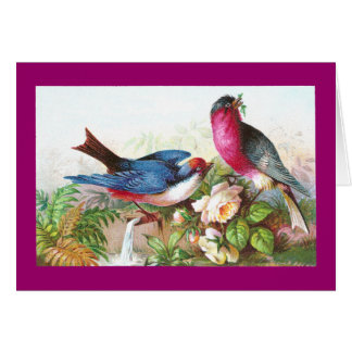 Colorful Birds, Roses & Waterspout Card