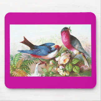 Colorful Birds, Roses & Waterspout Mouse Pad