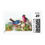 Colorful Birds, Roses & Waterspout Postage Stamp