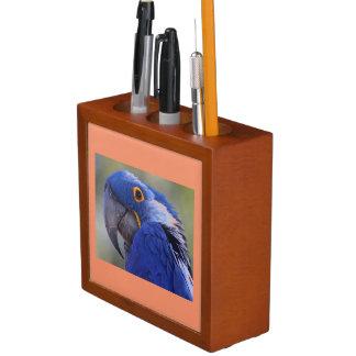 Colorful Blue Parrot Desk Organizer