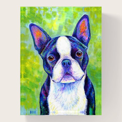 Colorful Boston Terrier Dog Paperweight