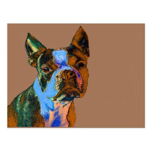 Colorful Boston Terrier Postcard