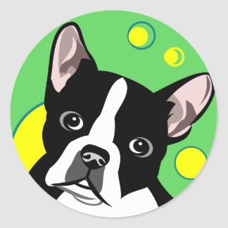 Colorful Boston Terrier Stickers
