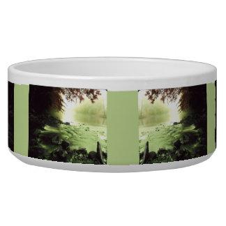 Colorful Brook Dog Bowl
