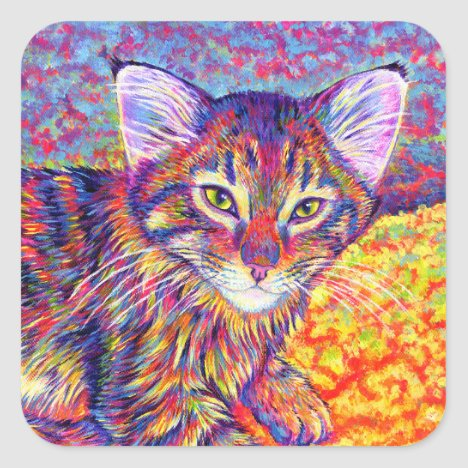 Colorful Brown Tabby Maine Coon Kitten Stickers