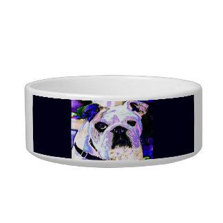 Colorful Bulldog Bowl
