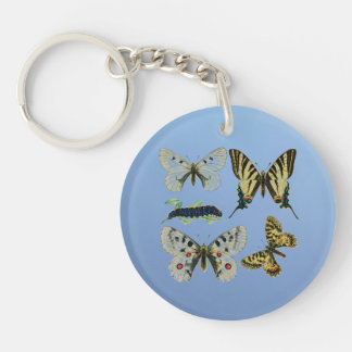 Colorful Butterflies and Caterpillars Double-Sided Round Acrylic Keychain