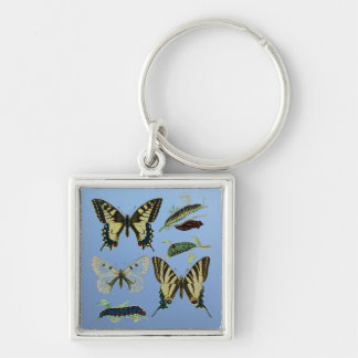 Colorful Butterflies and Caterpillars Silver-Colored Square Keychain