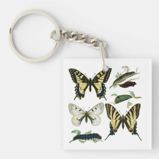 Colorful Butterflies and Caterpillars Single-Sided Square Acrylic Keychain