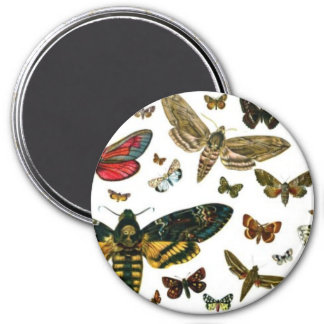 Colorful Butterflies Antiquarian Image Bookmark 3 Inch Round Magnet