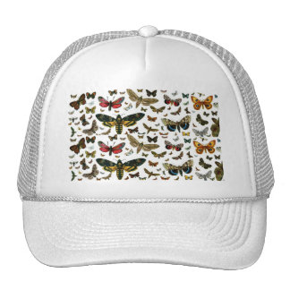 Colorful Butterflies Antiquarian Image Bookmark Hats