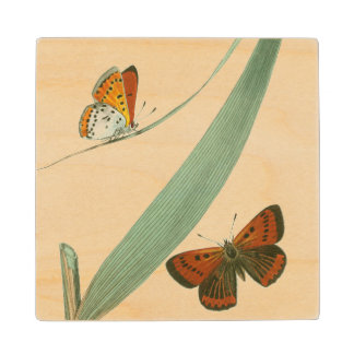 Colorful Butterflies Fluttering Around a Leaf Wood Coaster