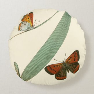 Colorful Butterflies Fluttering Around a Leaf Round Pillow