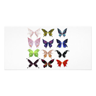 Colorful butterflies photo card template