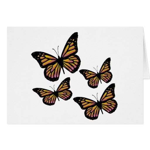 Colorful Butterfly Butterflies Card