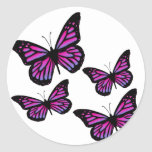Colorful Butterfly Butterflies Stickers