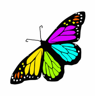 Colorful butterfly clipart cutout