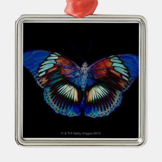 Colorful Butterfly design against black backdrop 2 Metal Ornament