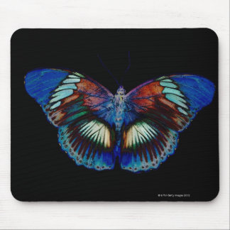 Colorful Butterfly design against black backdrop 2 Mouse Pad