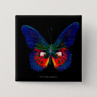 Colorful Butterfly design against black backdrop 2 Pinback Button