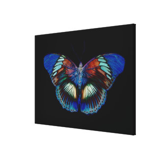 Colorful Butterfly design against black backdrop 3 Canvas Print