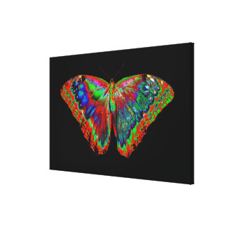 Colorful Butterfly design against black backdrop Canvas Print