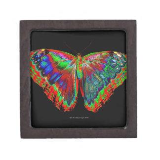 Colorful Butterfly design against black backdrop Keepsake Box