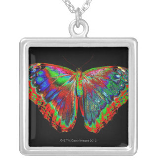 Colorful Butterfly design against black backdrop Silver Plated Necklace