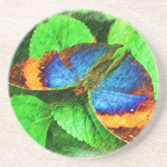 Colorful Butterfly Drawing Nature Coaster