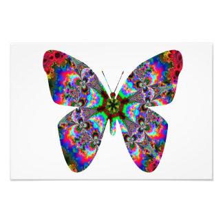 Colorful Butterfly Mandala Photograph