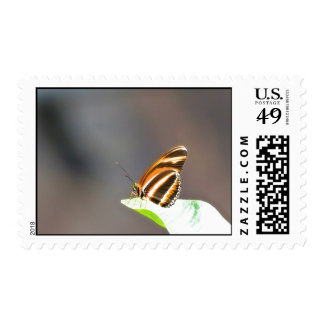 Colorful Butterfly On A Leaf Postage Stamp