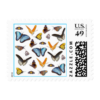 Colorful Butterfly postage
