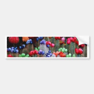 Colorful cacti bumper sticker