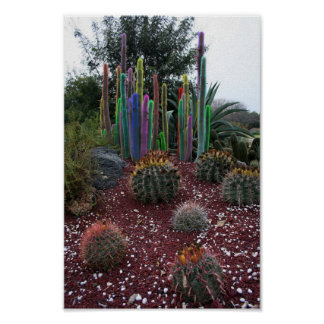 Colorful Cacti Poster