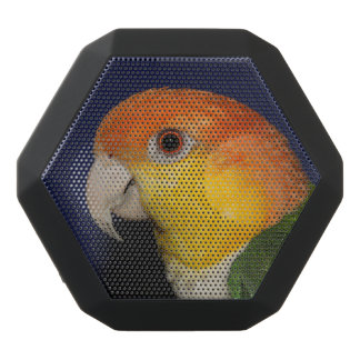 Colorful Caique Parrot Black Bluetooth Speaker