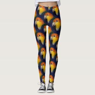 Colorful Caique Parrot Leggings