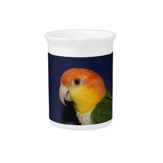 Colorful Caique Parrot Beverage Pitcher