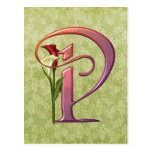 Colorful Calla Initial P Post Cards