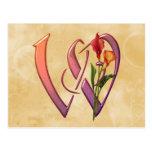Colorful Calla Initial W Postcard