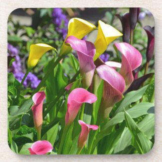 Colorful calla lily flowers drink coasters