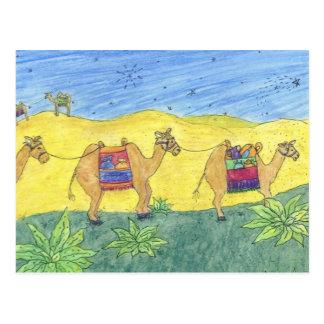 Colorful Camels Postcard