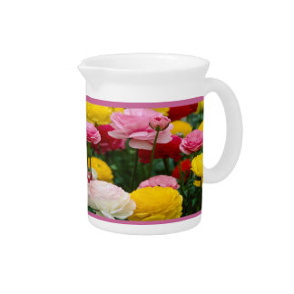 Colorful Carnation Flowers Pitcher