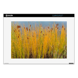 """Colorful Cattails 15"""" Laptop Skins"""
